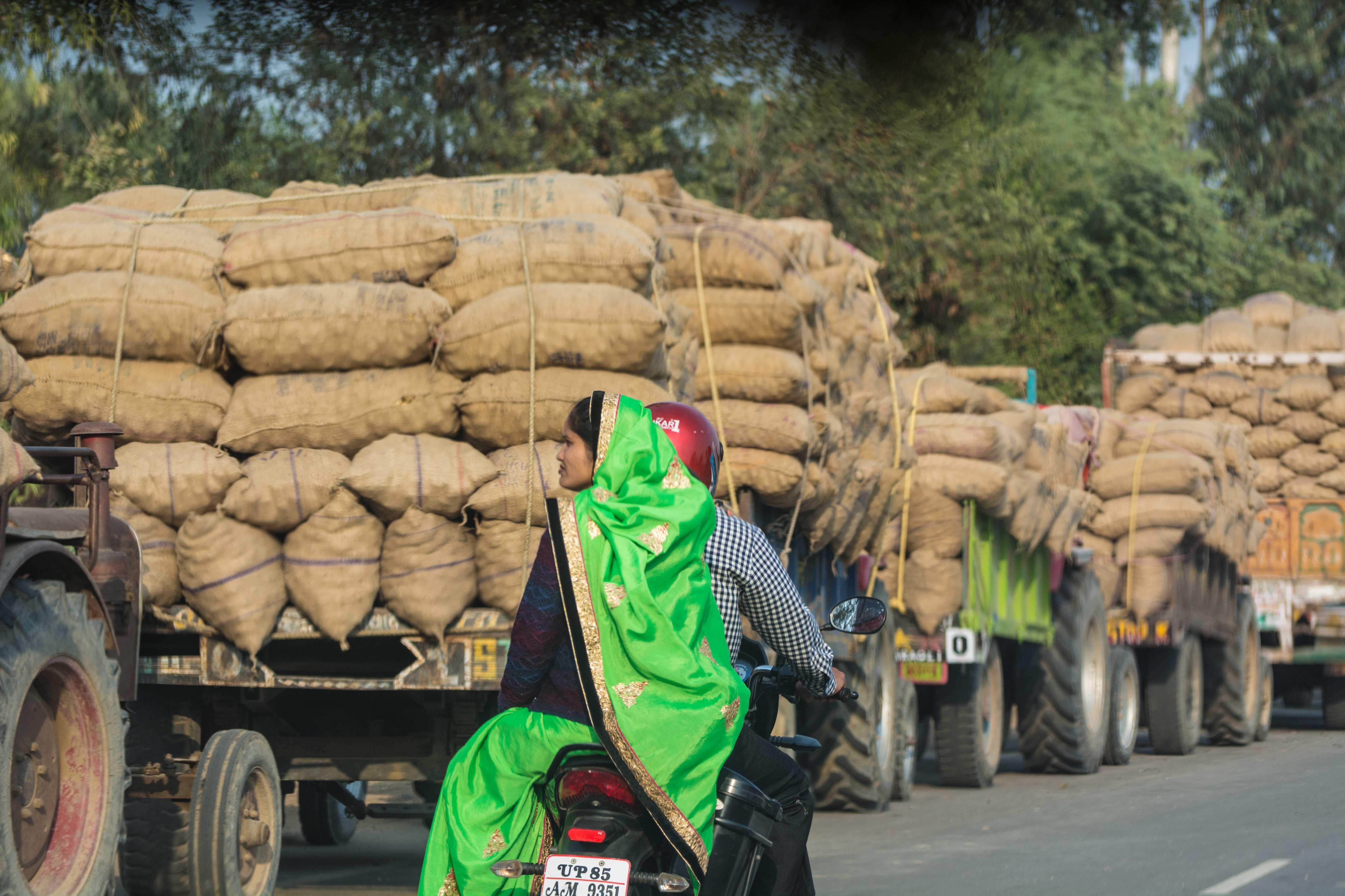 Circulation Inde: camions de pommes de terre