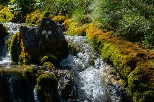 Mercantour, lacs de Vens - rivière